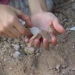 Αρχαιολογείο